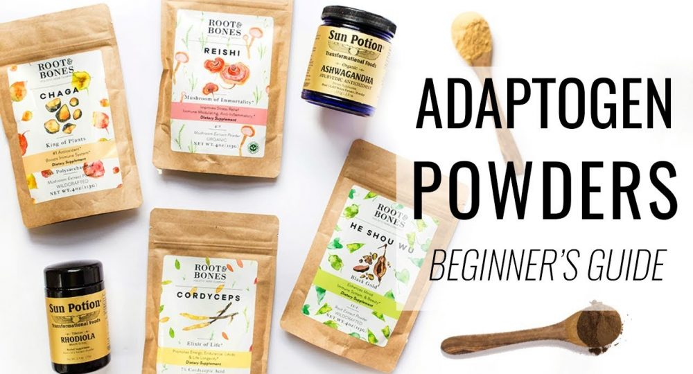 Adaptogens supplements: Our gateway to a stress-free life