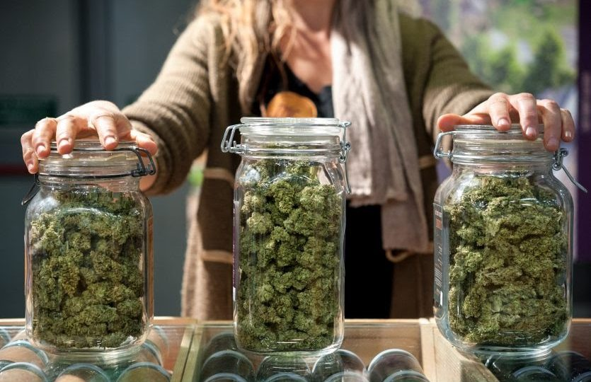 How to choose the right Cannabis dispensary